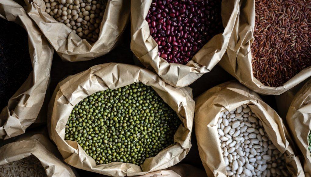 pflanzliche eiweißquellen gesund bohnen tempeh